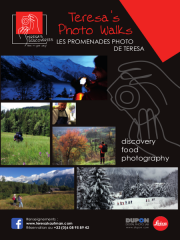 Découvertes & Promenades Photo